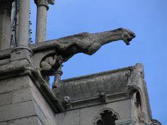 Gargoyle, Notre Dame de Paris 2008