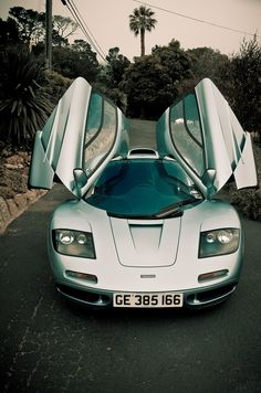 Mclaren F1 . Classic pick combing graceful aesthetics and incredible handling and speed.