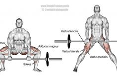 if you are searching for How To Do Barbell Sumo Deadlift then we must say you are in the right place. Learn How To Do Barbell Sumo Deadlift Properly. Fitness Workouts, Fitness Gym, Weight Training Workouts, Muscle Fitness, Fitness Shirts, Corps Fitness, Training Exercises, Training Plan, Back Workout Program
