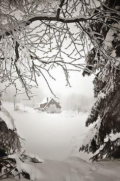 Winter Farm ❉