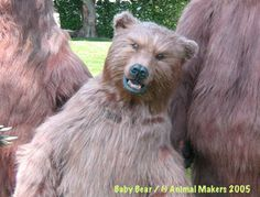 Brown Bears, Predators, Circus Animals, Bears, Kodiak Bears, Halloween, Suits, Suits (Bear), Woodland Creatures, Polar Bears