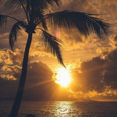 nothing like a Maui sunset to set the mood... #luckywelivehawaii  #sunsetlove  #benpigaophotography @benpigao