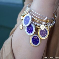Connect to your SIGN, your astrological self, and unleash your true and innate gifts with deeper insight. Celestial Wheel Collection | ALEX AND ANI