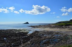 Wembury Beach is a great place to go rockpooling