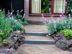 height difference in romantic small backyard Backyard Garden Landscape, Garden Landscaping, Sidewalk, Outdoor Structures, Patio, Plants, Hoe, Gardens, Future