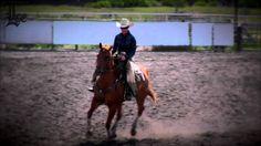 2014 Spring Cowhorse Classic 6-22-2014 www.lakecountyexam.com