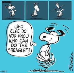 Snoopy cartoon via www.Facebook.com/Snoopy