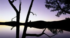 Cradle Mountain - Australia