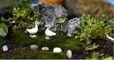 10 Pairs Miniature Dollhouse Bonsai Fairy Garden Landscape Couple Duck
