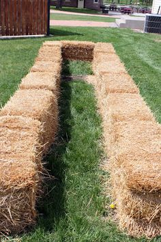 4 the Love of Family: Straw Bale Gardening - take 2