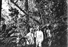 Correspondent en schrijver Johan Fabricius (1899-1981) in Nederlands-Indië in een oerwoud samen met drie inlanders. Nederlands Oost-Indië. 1911.