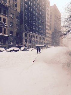 New York in the snow. It could be 2016, it could be 1956.