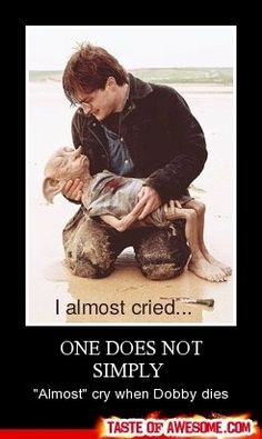 if you didn't cry when when dobby died then your heartless and have no soul. you dont just go oh thats so sad. no you cry and cry for weeks until you literally have no tears left. yes i cried for weeks.