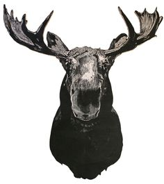 """This life-size moose is a limited edition of 99 and is hand printed from an original woodcut onto mulberry paper with oil based ink. The print is then pasted onto 3/4"""" plywood and the exact image is sawed out, sanded, wired, and made ready for your wall. Being that each one is hand printed, they all slightly vary from one another.About 32"""" x 36.5""""*Each animal head is cut out by order. Please allow 7-10 business days before shipping. Thank you!*"""