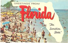 Vintage Florida Postcard Greetings From by savannahsmiles4u