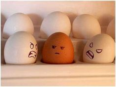 This post is about Egg Design but it's nothing to do with Easter egg. In this Article, you will see a list of Creative Egg Pictures where Artist create an expression on the eggs by drawing faces. Egg Pictures, Funny Pictures, Funny April Fools Pranks, Funny Eggs, Easter Funny, Bowl Of Cereal, Egg Art, Food Humor, Funny Food