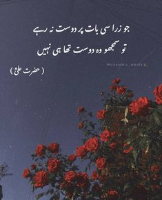 Urdu Quotes With Images, Poetry Quotes In Urdu, Best Urdu Poetry Images, Ali Quotes, Urdu Poetry Romantic, Good Life Quotes, True Quotes, Qoutes, Quotes Deep Feelings