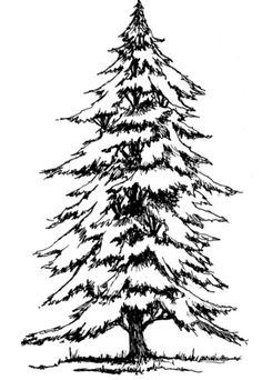 free printable coloring image Snow