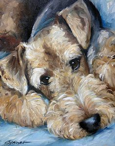 'Phineas the Airdale' by Mary Sparrow, oil on canvas. 'Phineas the Airdale' by Mary Sparrow, oil on canvas. Fox Terriers, Wire Fox Terrier, Airedale Terrier, Terrier Dogs, Welch Terrier, Wire Haired Terrier, Irish Terrier, Dog Portraits, Animal Paintings