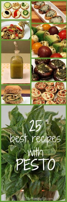 25 Best Recipes With Pesto! How to make and use pesto from some of best cooks in the blogosphere. TheYummyLife.com