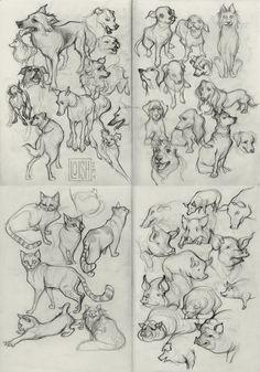 Lois van Baarle on Loish Animal Sketches, Animal Drawings, Art Drawings, Drawing Studies, Art Studies, Sketchbook Inspiration, Art Sketchbook, Loish, Character Design Tutorial