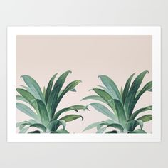 $18 - Aloe Art Print by Marta Li. Worldwide shipping available at Society6.com. Just one of millions of high quality products available.