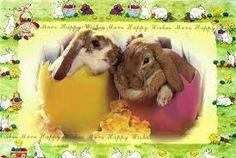 """Képtalálat a következőre: """"húsvét"""""""
