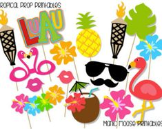 Tropical Party Props Cocktails and Dreams Photo by CreativeSenseCo