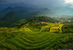 sapa, vietnam - There's nowhere on Earth like Sapa: tiers on tiers of bright-green rice fields are dotted with the colorful clothes of hill-tribe dwellers and roofs of French colonial villas. Sometimes the view gets clouded by a warm, jungle-y mist, but it only makes your day of hiking even prettier.
