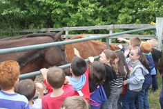 Learning & Teaching about the Environment - Educational Programs, The Visitors, Law Enforcement, Compassion, Two By Two, Environment, Students, Meet, Relationship