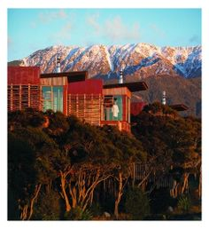 Hapuku Lodge Tree Houses, Kaikoura.