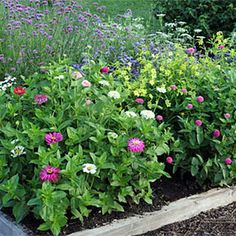 Plans for Cutting Gardens, Kitchen Garden, Plan your own garden....Planting Map: Gardener's Supply