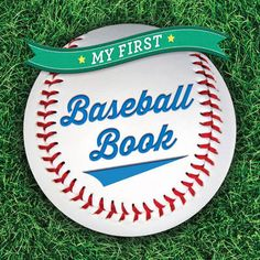 My First Baseball Book (15)