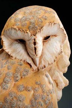 Owl wood sculpture by Craig Hone Beautiful Owl, Animals Beautiful, Cute Animals, Sculptures Céramiques, Bird Sculpture, Owl Art, Bird Art, Arte Van Gogh, Carnivore