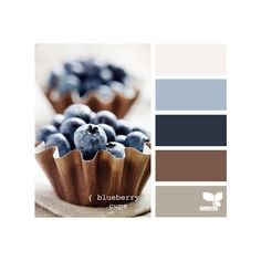 Blogger ❤ liked on Polyvore featuring design seeds, colors, backgrounds, color palettes and palettes