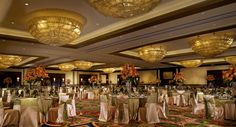 Weddings in Houston Hilton Americas