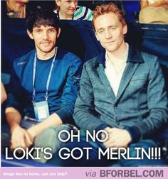 Loki And Merlin…nah they're cool, they know eachother from their cheekbone club