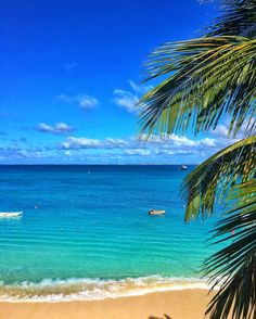 Grand Case Bay, Saint Martin - recommended as great place for 10yo age kids, get a VRBO near the cove for swimming. Famous for good French restaurants.