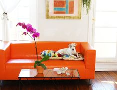 Span the Spectrum with multicolored goodies! ( Instant Feng Shui by Dana Claudat in Lonny)