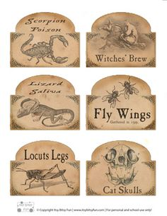 8 Best Images of Free Printable Potion Labels - Free Printable Halloween Labels, Free Printable Halloween Bottle Labels and Harry Potter Potions Labels Free Printables Halloween Prop, Halloween Projects, Holidays Halloween, Vintage Halloween, Halloween Clipart, Halloween Images, Halloween Apothecary Labels, Halloween Bottle Labels, Halloween Potions