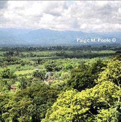 View from the lift in el Parque Nacional del Café