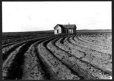 Power farming displaces tenants. Texas panhandle, 1938. Photographer: Dorothea Lange.