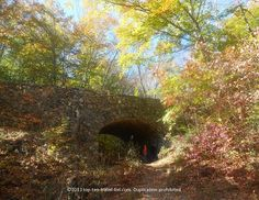 An absolutely gorgeous setting for #fall at beautiful Devil's Hopyard State Park in East Haddam #Connecticut