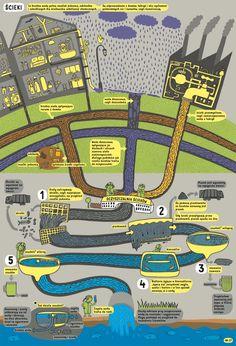《地圖》作者丹尼爾與亞歷珊卓:再做一本大人小孩都想擁有的書──《地下世界.水下世界》-人物專訪-閱讀現場-博客來OKAPI