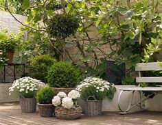 white flowers in baskets
