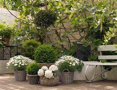 Jardin blanc en contenants.