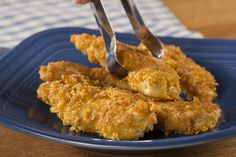 Crispy Golden Chicken | EverydayDiabeticRecipes.com