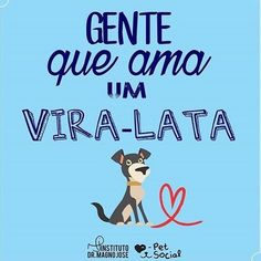 EU AMO!!! <3 #petmeupet #cachorro #amocachorro #cachorroetudodebom #viralata #amoviralata