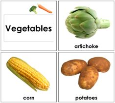 Toddler Vegetable Cards: 27 different vegetables in toddler sized cards. Printable Toddler Montessori Materials by Montessori Print Shop Toddler Vegetables, Types Of Vegetables, Different Vegetables, Asparagus Soup, Asparagus Recipe, Learn Hebrew Online, Toddler Themes, Learning A Second Language, Title Card