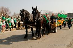 Everyone's Irish for the Old Neighborhood St. Patrick's Day Parade!